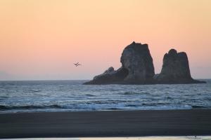 August 21, 2012 - Rockaway Beach