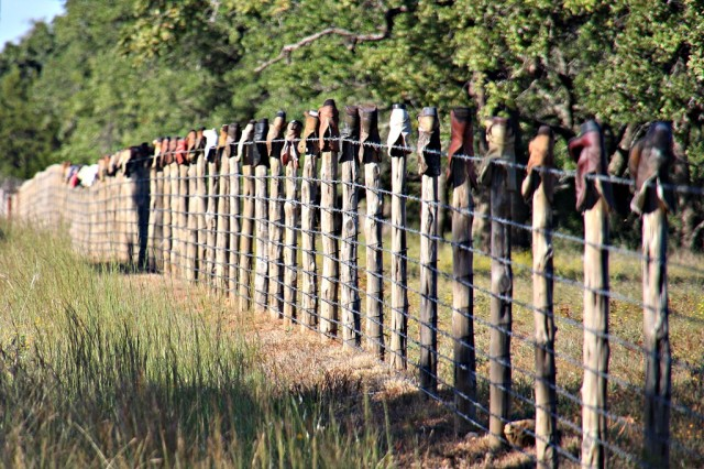 October 16, 2013 - Willow City Loop Fence Posts