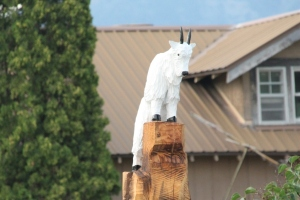 July 27, 2012 - Chainsaw Art