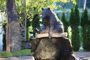 Bigfork Bear