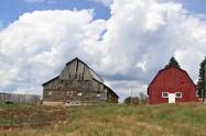 Old Barn, New Barn