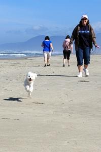 August 27, 2012 - Run Peggy Run
