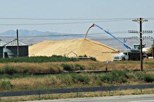 Idaho Wheat Stack