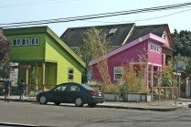 Green and Pink House