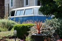 Portland_bus2